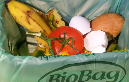 Food waste bag