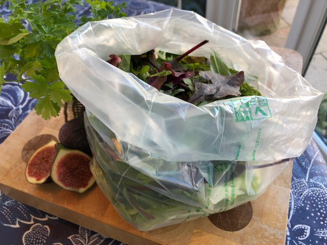 leaves in clear salad bag